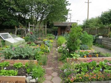 Community Garden in Vancouver